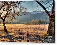 Acrylic Print featuring the photograph Cades Cove, Spring 2017 by Douglas Stucky