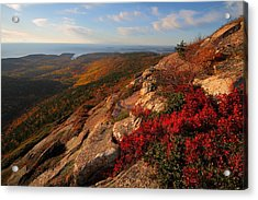 Cadillac Mountain Sunrise At Acadia National Park Acrylic Print by Jetson Nguyen