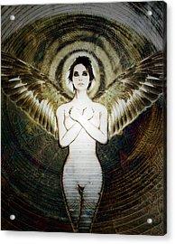 Caelestis Acrylic Print