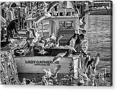Cafe Lady Catherine Black And White Acrylic Print