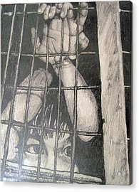 Acrylic Print featuring the drawing Caged by Jean Haynes