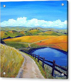 Calero Pond Acrylic Print by Stephanie  Maclean