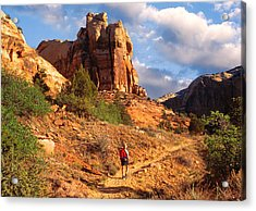 Calf Creek Canyon Escalante Utah Acrylic Print by Utah Images