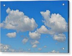 Acrylic Print featuring the photograph Calgary's Sky by Evelina Popilian