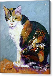 Calico Buddy Acrylic Print by Susan A Becker