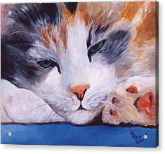 Calico Cat Power Nap Series Acrylic Print