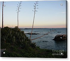 California At Twilight Acrylic Print by Mini Arora