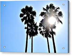 California Acrylic Print by Christopher Woods