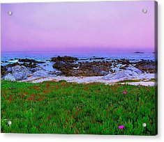 California Coast Acrylic Print by Jen White