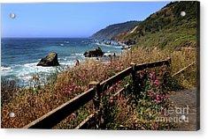 Acrylic Print featuring the photograph California Coast by Joseph G Holland