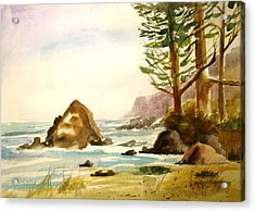 California Coast Acrylic Print by Larry Hamilton