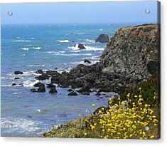 California Coast Acrylic Print by Laurel Powell