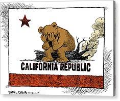 California Fire Bear Grieves Acrylic Print