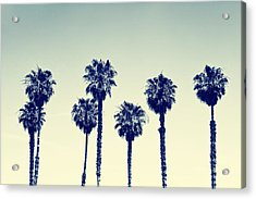 California Palm Trees Acrylic Print