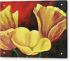 California Poppies Iv Acrylic Print by Torrie Smiley