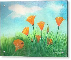 California Poppies Acrylic Print by Janet Hinshaw