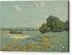 California Poppy Field Acrylic Print by Granville Redmond