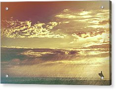 California Sunset Surfer Acrylic Print