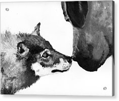 Call Of The Wild Illustration Acrylic Print by Jessica Kale