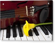 Calla Lily And Violin On Piano Acrylic Print by Garry Gay