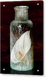 Acrylic Print featuring the photograph Calla Lily In A Bottle by Phyllis Denton
