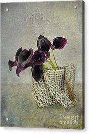 Calla's Bag Acrylic Print