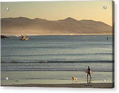 Acrylic Print featuring the photograph Callie Day.. by Al Swasey