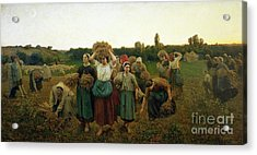 Calling In The Gleaners Acrylic Print