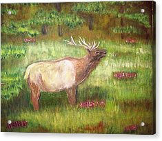 Calling The Herd Acrylic Print by Belinda Lawson