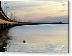 Calm Evening By The Bridge Acrylic Print