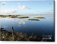 Calm Wetland Acrylic Print by Kennerth and Birgitta Kullman
