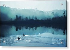 Calming Water Acrylic Print by Gina Signore