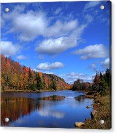 Calmness On Bald Mountain Pond Acrylic Print by David Patterson