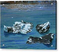 Calved Glaciers Alaska Acrylic Print by Vidyut Singhal