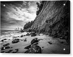 Calvert Cliffs II Acrylic Print by Robert Davis