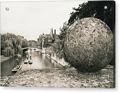 Cambridge Punting  Acrylic Print by Eden Baed