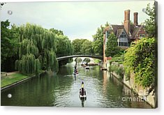 Cambridge River Punting Acrylic Print by Eden Baed