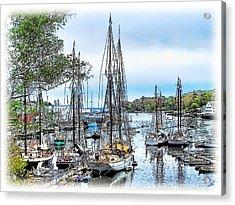 Camden Bay Harbor Acrylic Print by Tom Schmidt