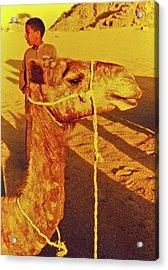Camel Ride Acrylic Print by Elizabeth Hoskinson