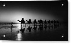 Camels On The Beach Acrylic Print