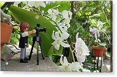 Camera People Come In All Sizes Acrylic Print by Liza Eckardt