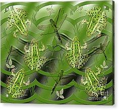Camo Frog Dragonfly Acrylic Print