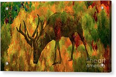 Camouflage Deer Acrylic Print