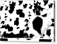 Camouflage Acrylic Print by Robert Sijka