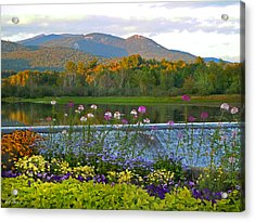 Campton Pond Campton New Hampshire Acrylic Print by Nancy Griswold