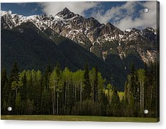 Canadian Rockies With Aspen Trees 5344 Acrylic Print