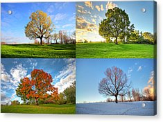 Canadian Seasons Acrylic Print