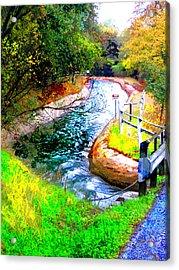 Canal Acrylic Print by Danielle Stephenson