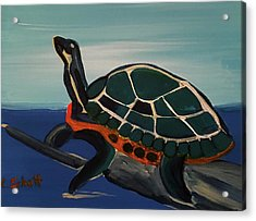 Canal Pointe Turtle Acrylic Print