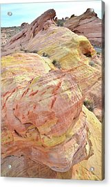Acrylic Print featuring the photograph Candy Colored Sandstone In Valley Of Fire by Ray Mathis